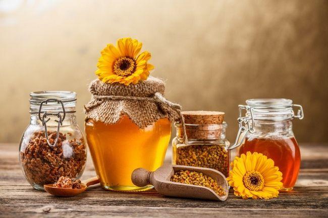 Мед і продукти бджільництва